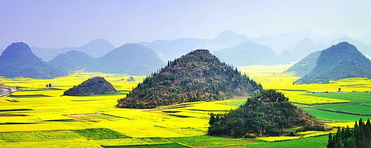 Trekking through flower fields in Yunnan