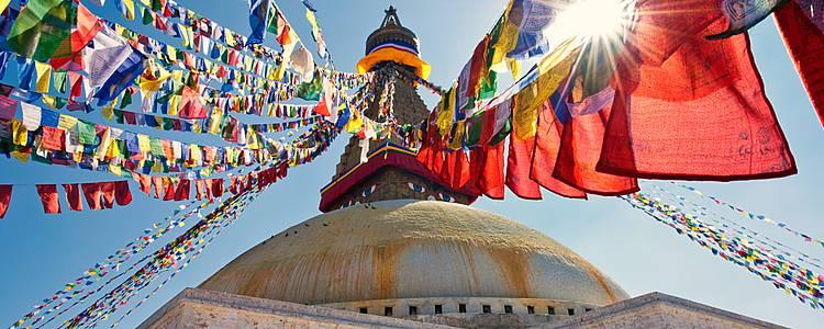 Reise zu den Wurzeln Buddhas