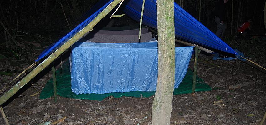 Alojamiento básico en la selva. No es el más barato.