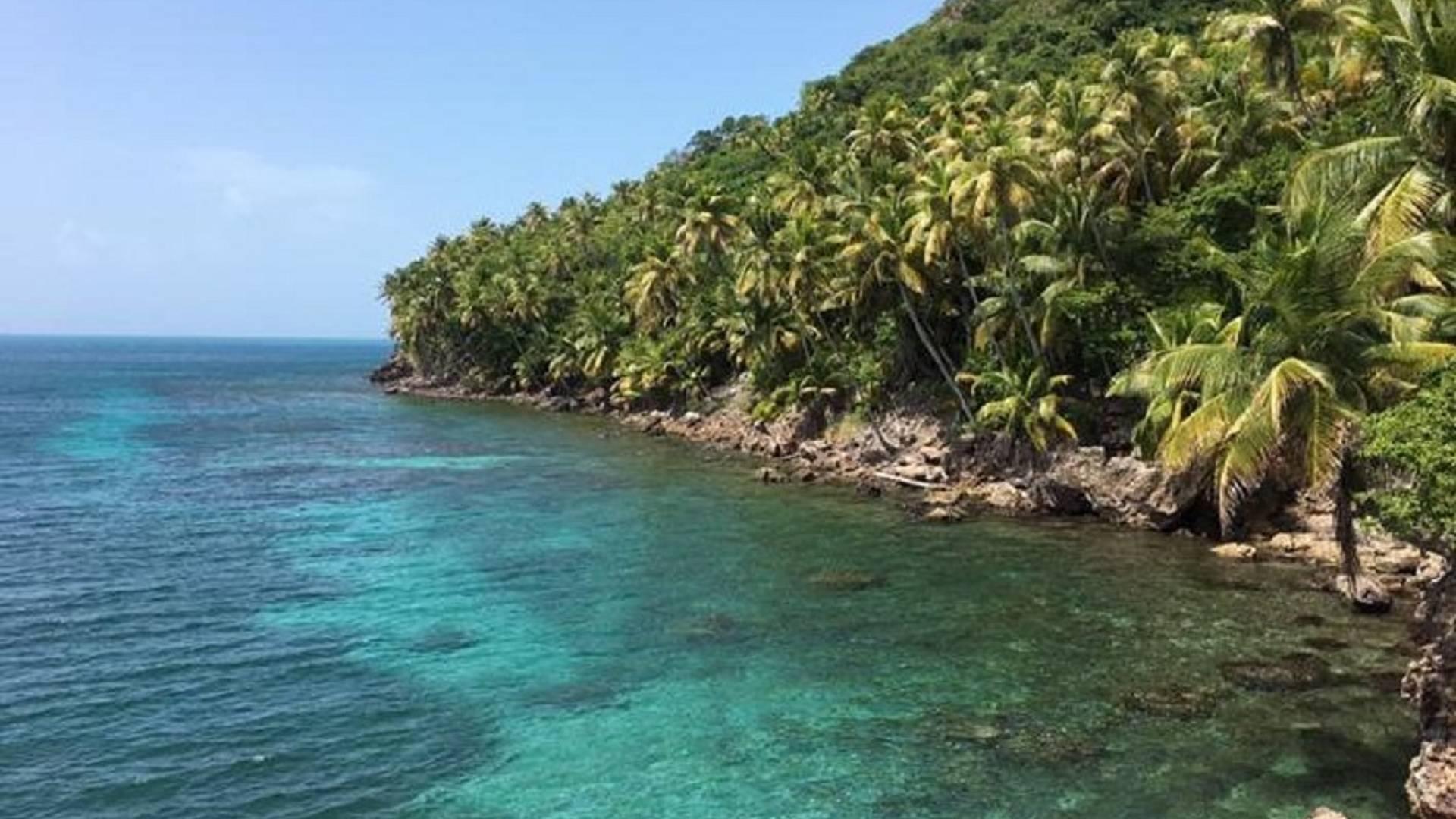 Déconnexion au coeur de la nature préservée des Caraïbes