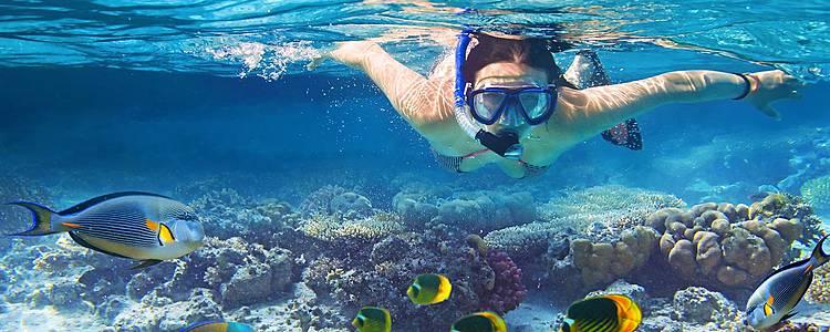 Les îles en voilier et en snorkeling