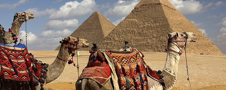 The best of Cairo, Alexandria and Upper Egypt