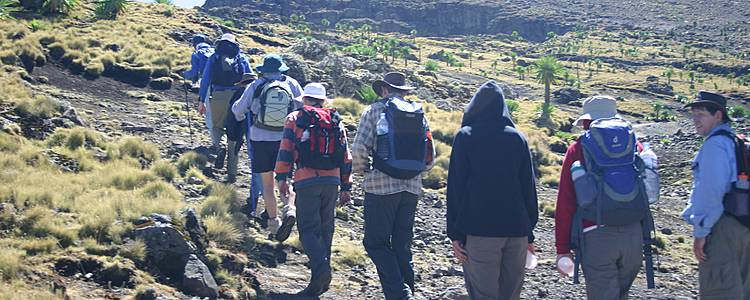 Hiking Simien National Park and Northern classics