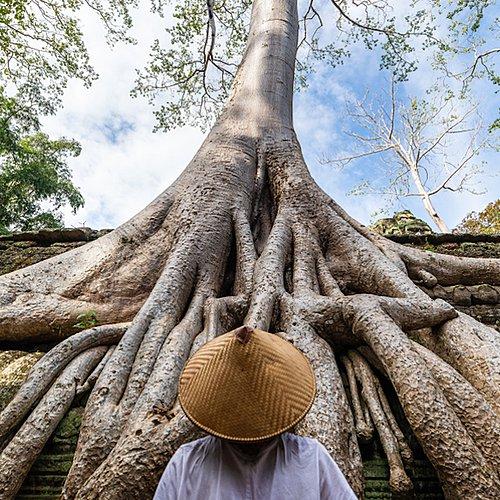 Entre nature et culture, temples et plage de rêve -
