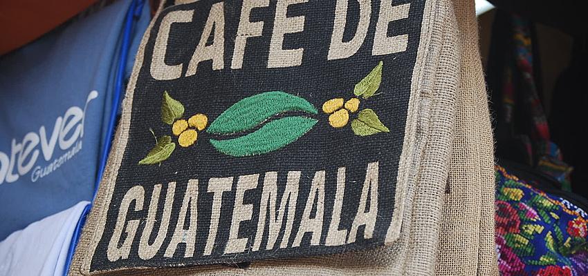 Guatemala, un gran productor de café