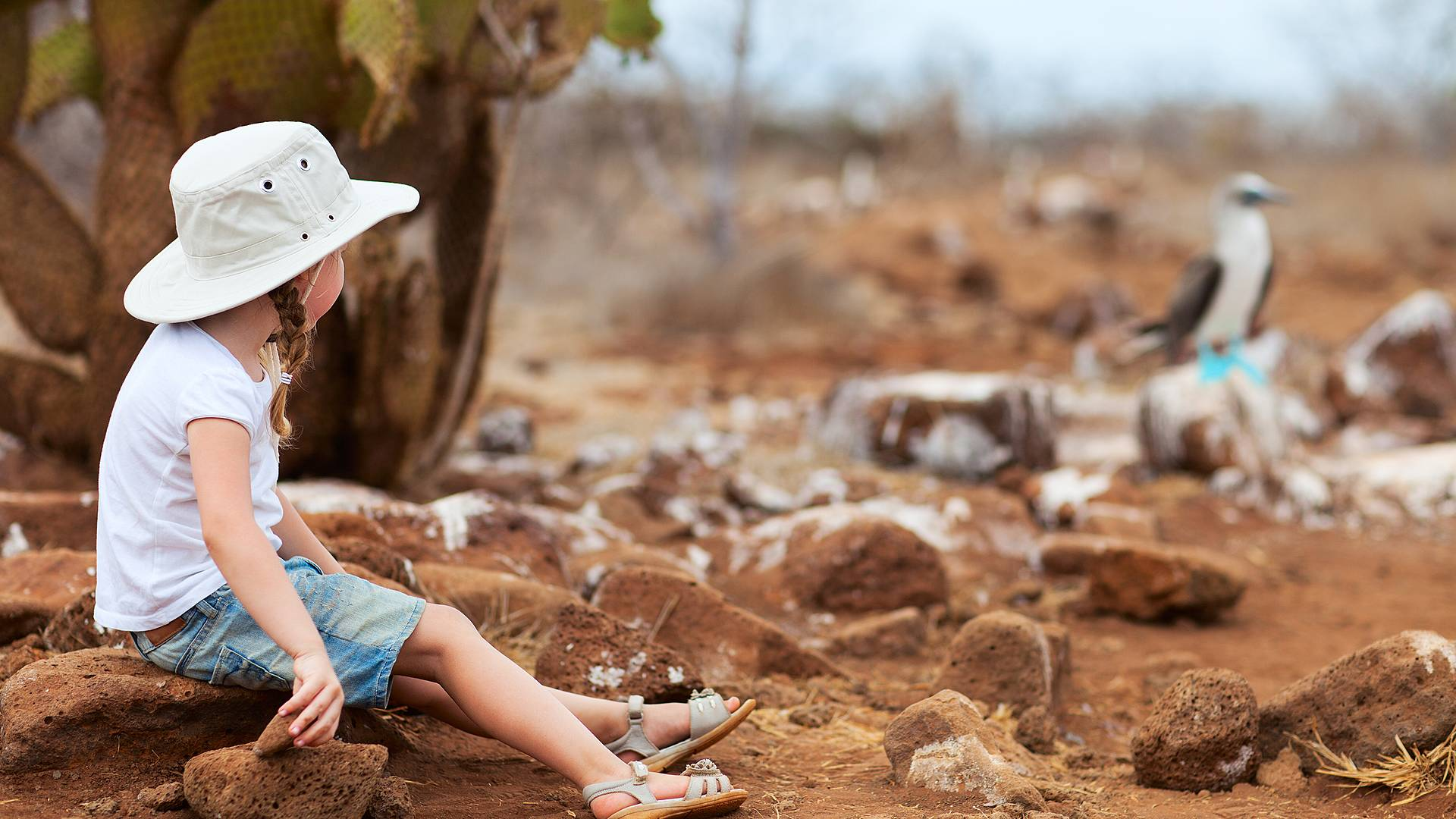 Amazonie, volcans et Galapagos en famille