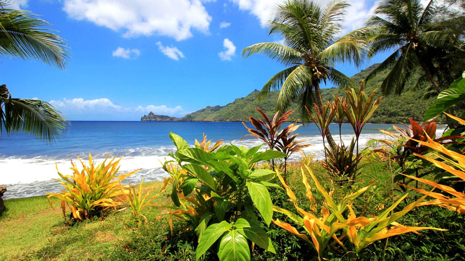 Du bleu lagon de Moorea au vert de l'archipel sauvage des Marquises