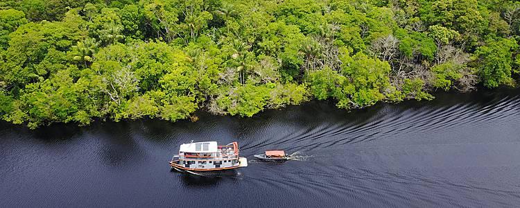 Paradis sauvages de l'Amazonie et du Pantanal