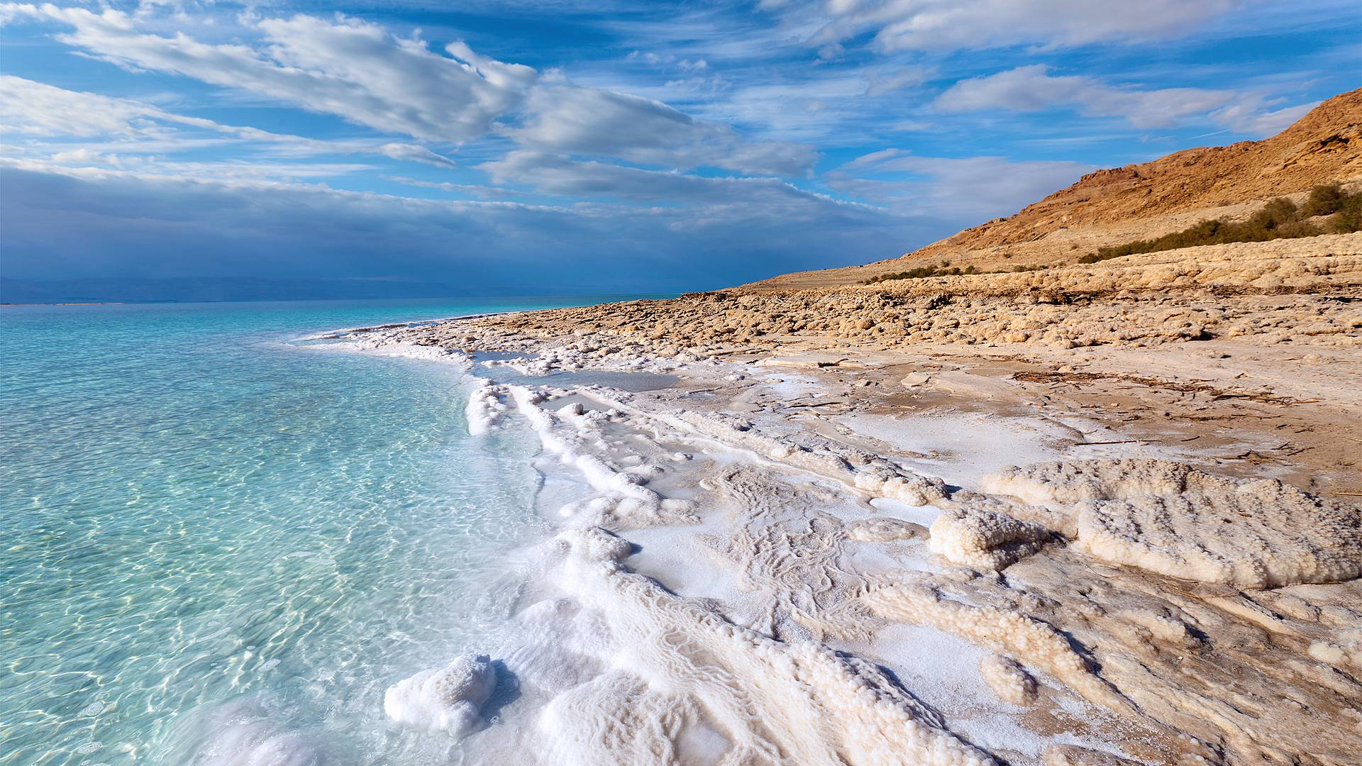 Esenciales y Mar Muerto
