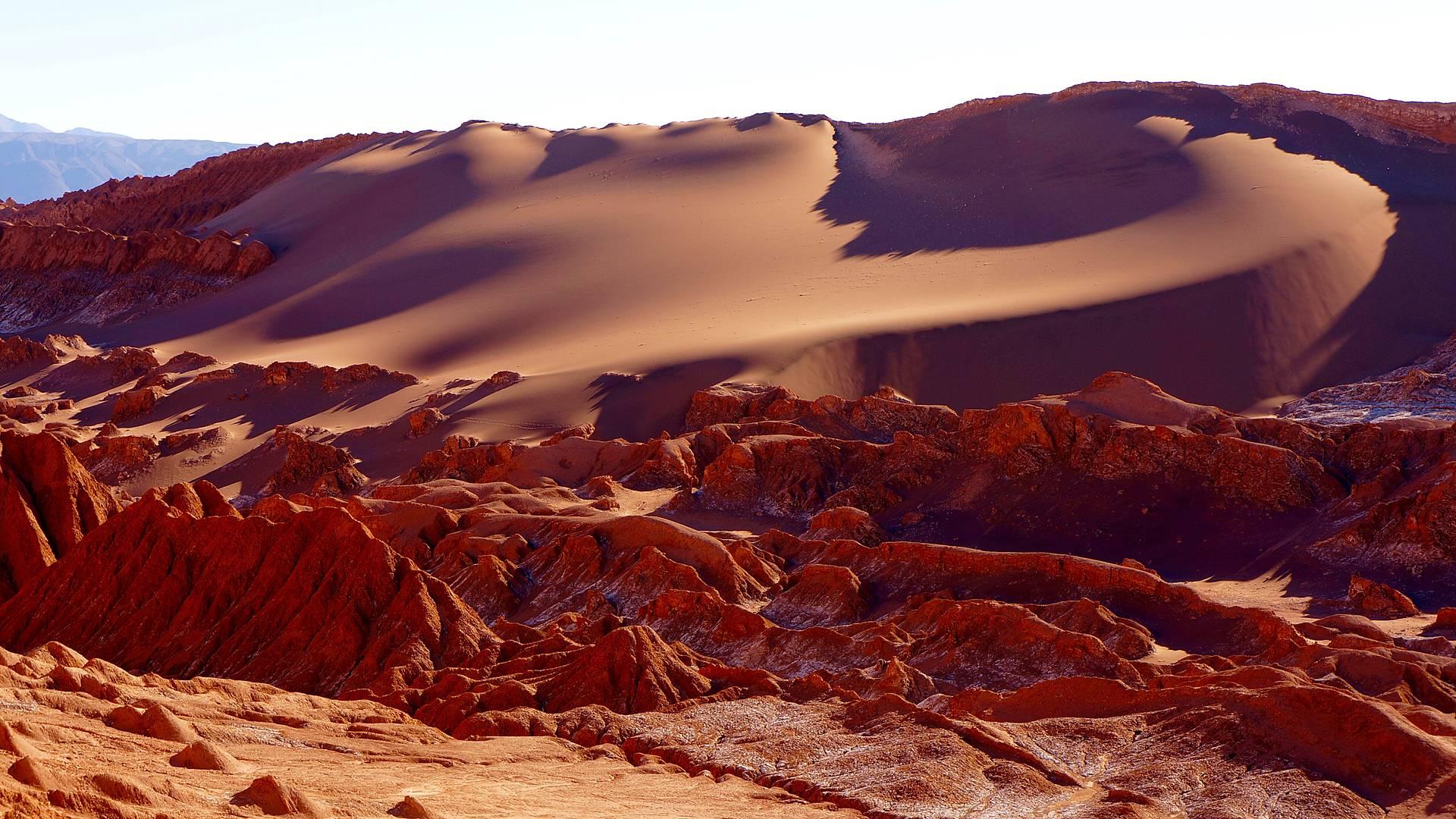 Au coeur de l'Altiplano en groupe
