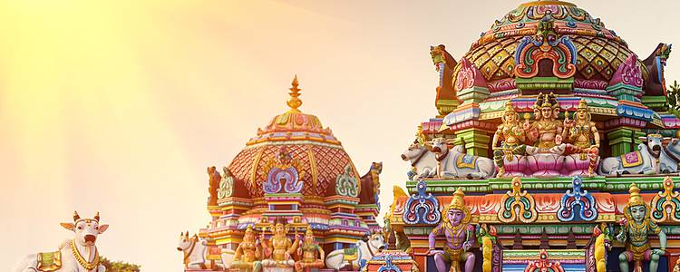Culture and nature in South India