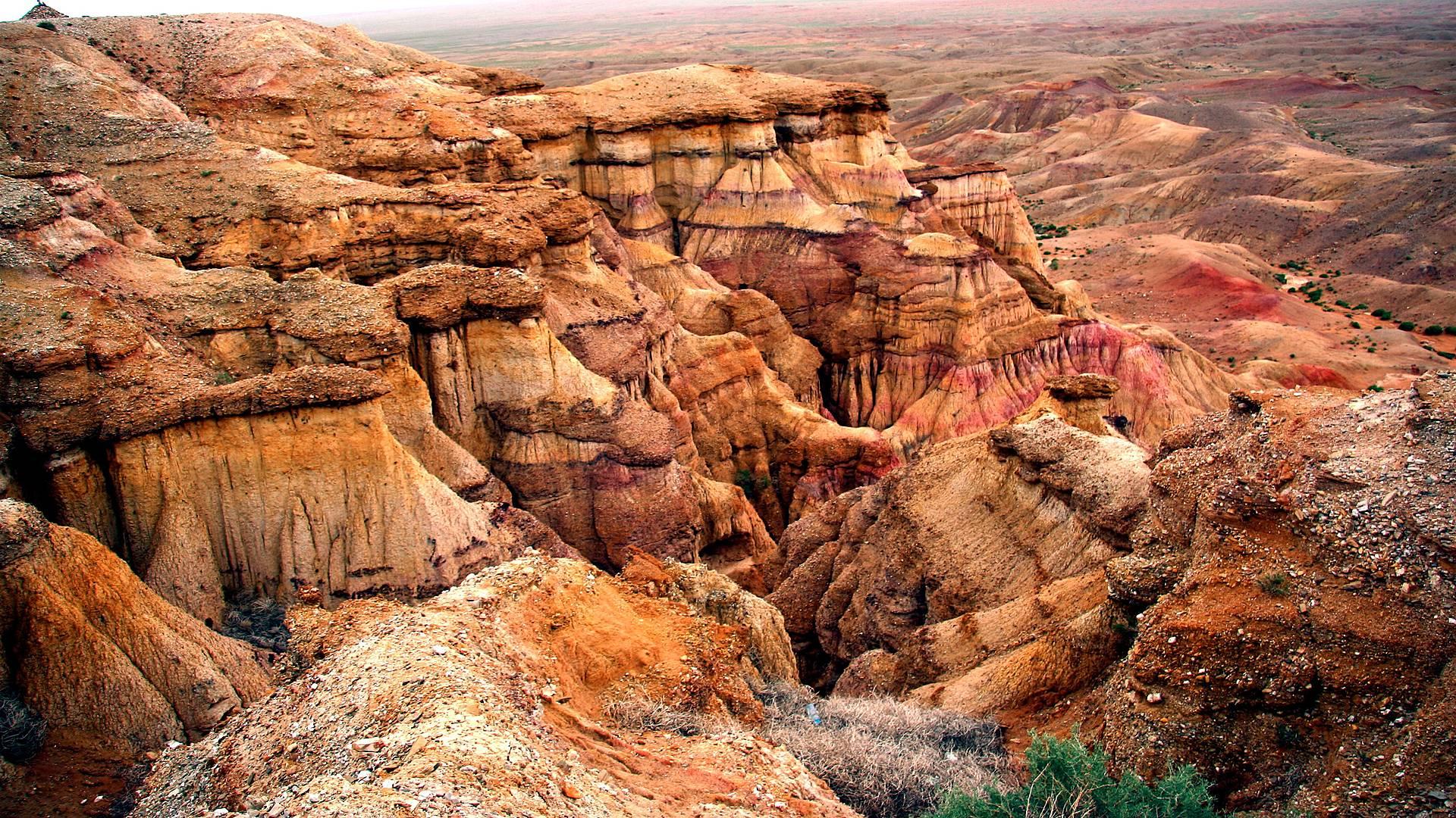 Desierto de Gobi y Estepa Central