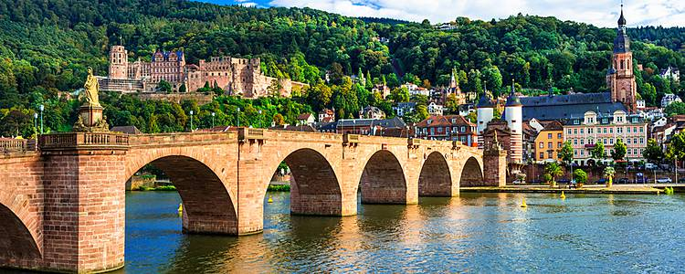 Discover Frankfurt and the Black Forest with private driver
