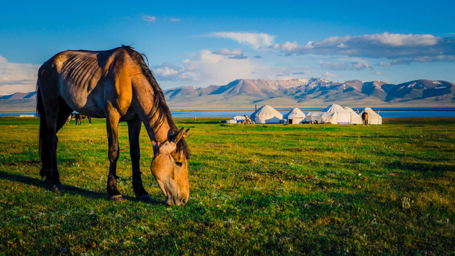 Explorando Kirguistán y Tayikistán