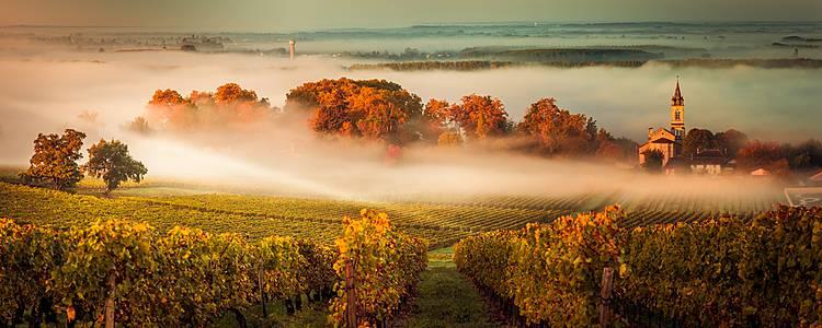 Gourmand's tour of Bordeaux