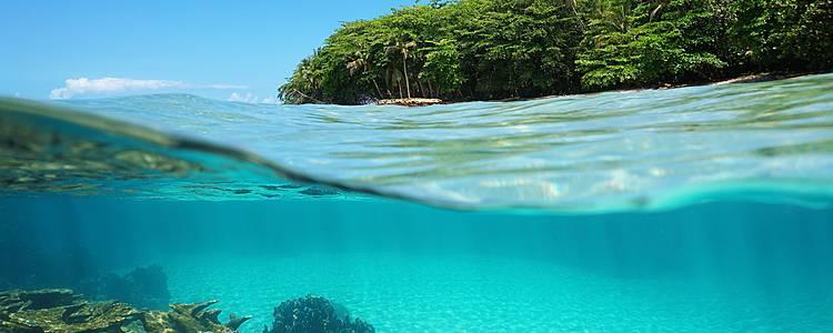 A la búsqueda del Quetzal y los arrecifes de coral