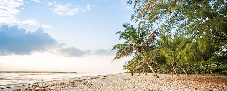 Relaxing beach and SGR safari