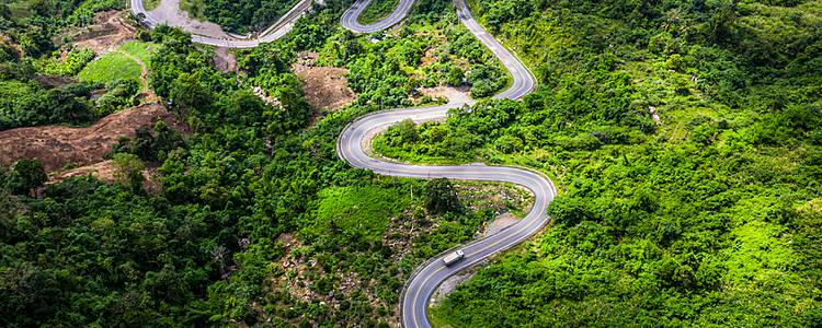 Cloud forest road trip