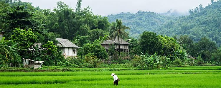 De la baie d'Halong aux plages de Phu Quoc, en écolodges
