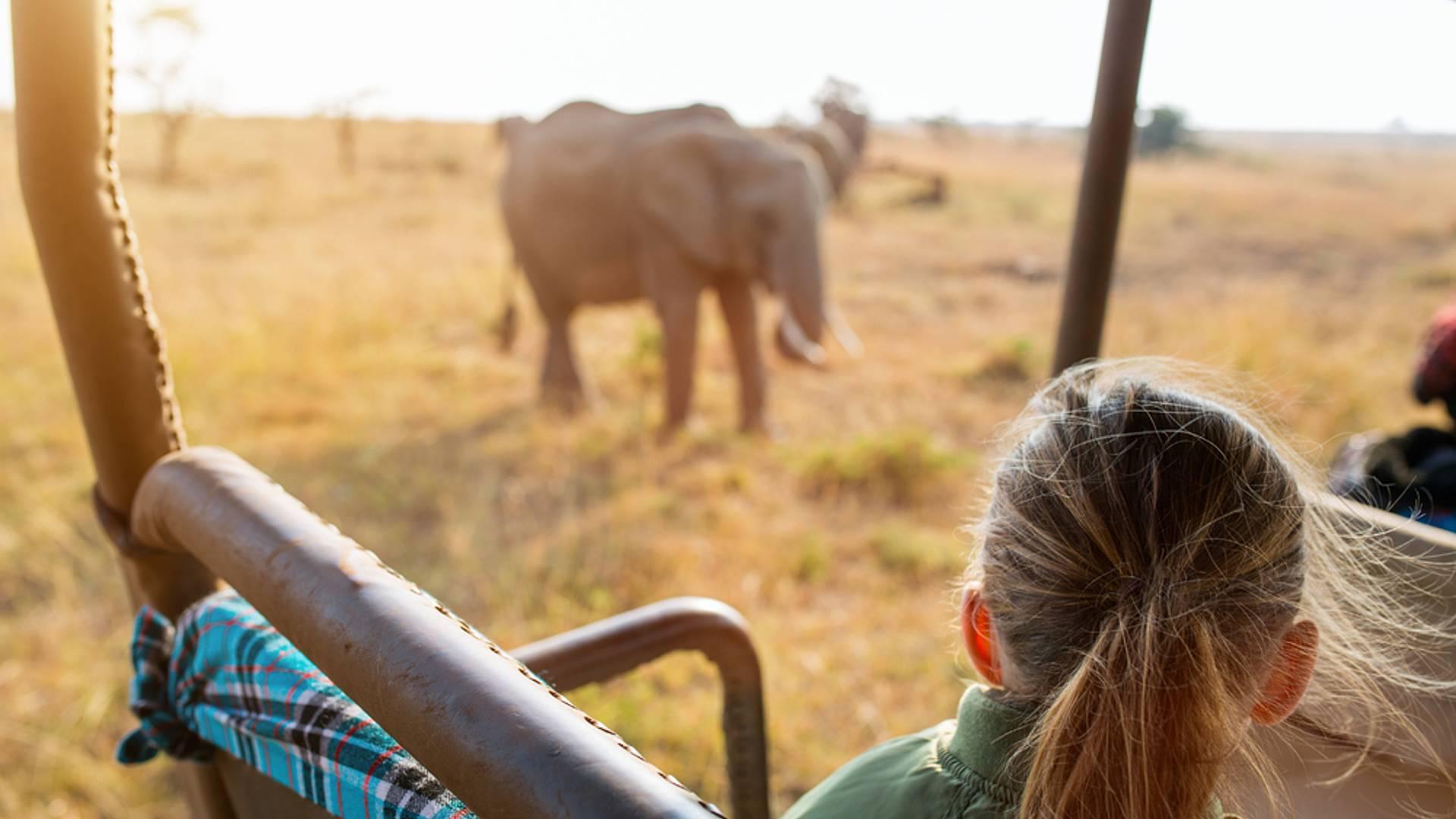 Safari: Memorias de Kenia