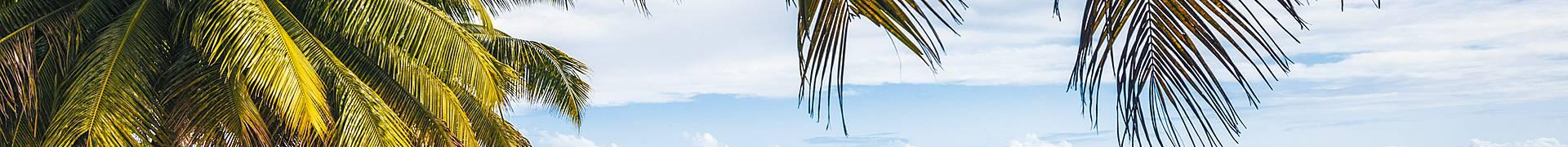 Est de Madagascar