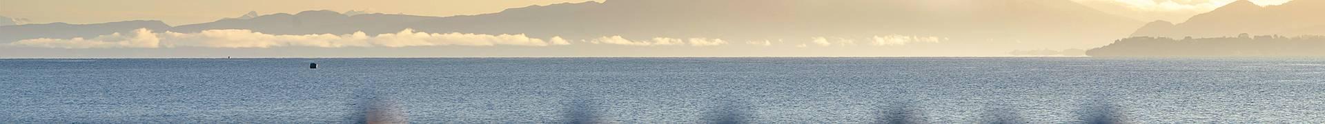 Région des Grands Lacs du Chili