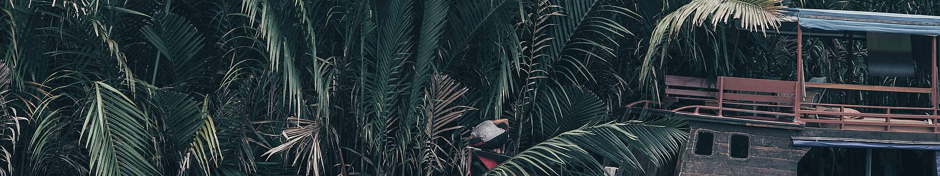 Borneo reizen