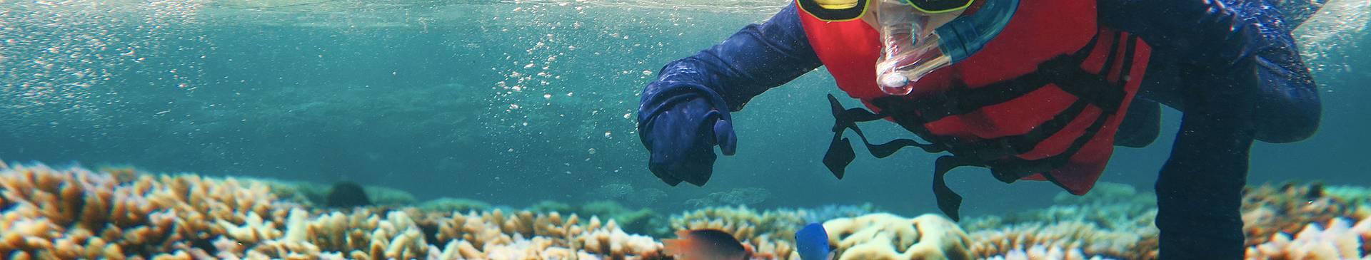 Snorkeling e immersioni in Australia