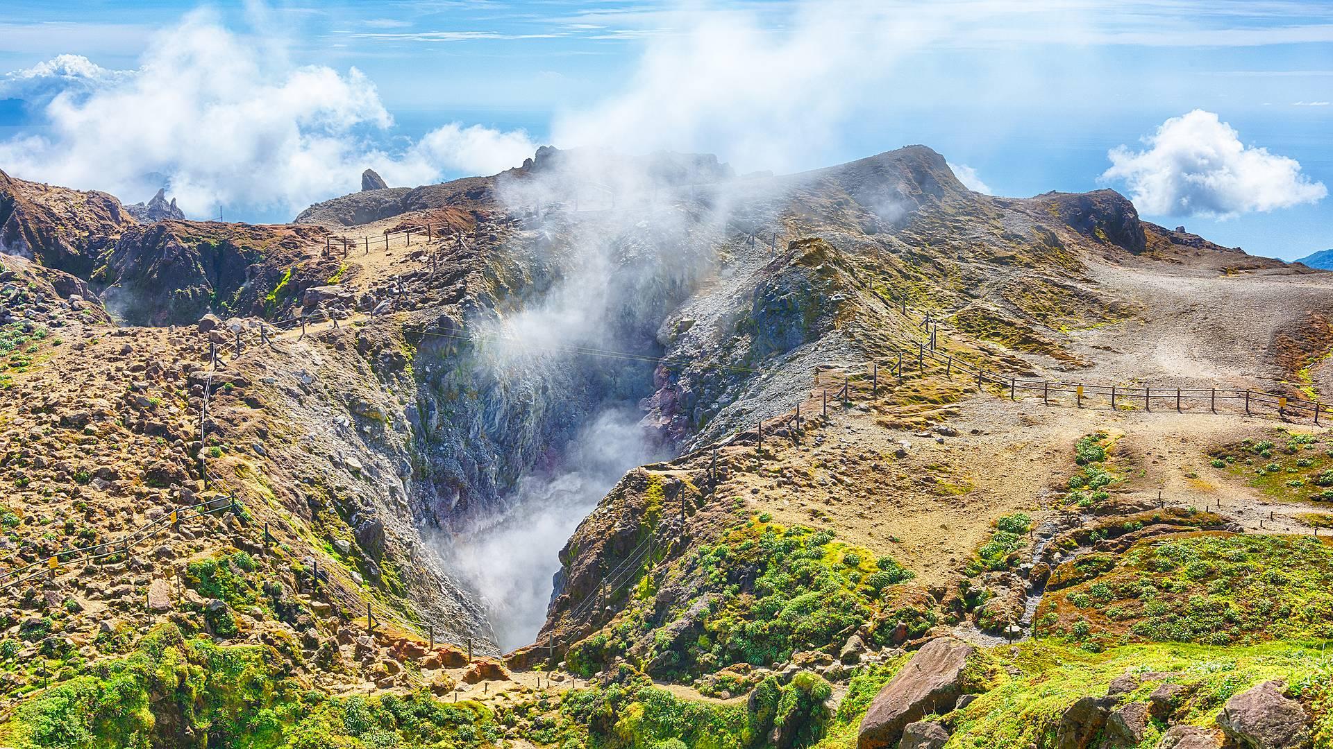 L'or vert des îles de Guadeloupe, la nature autrement