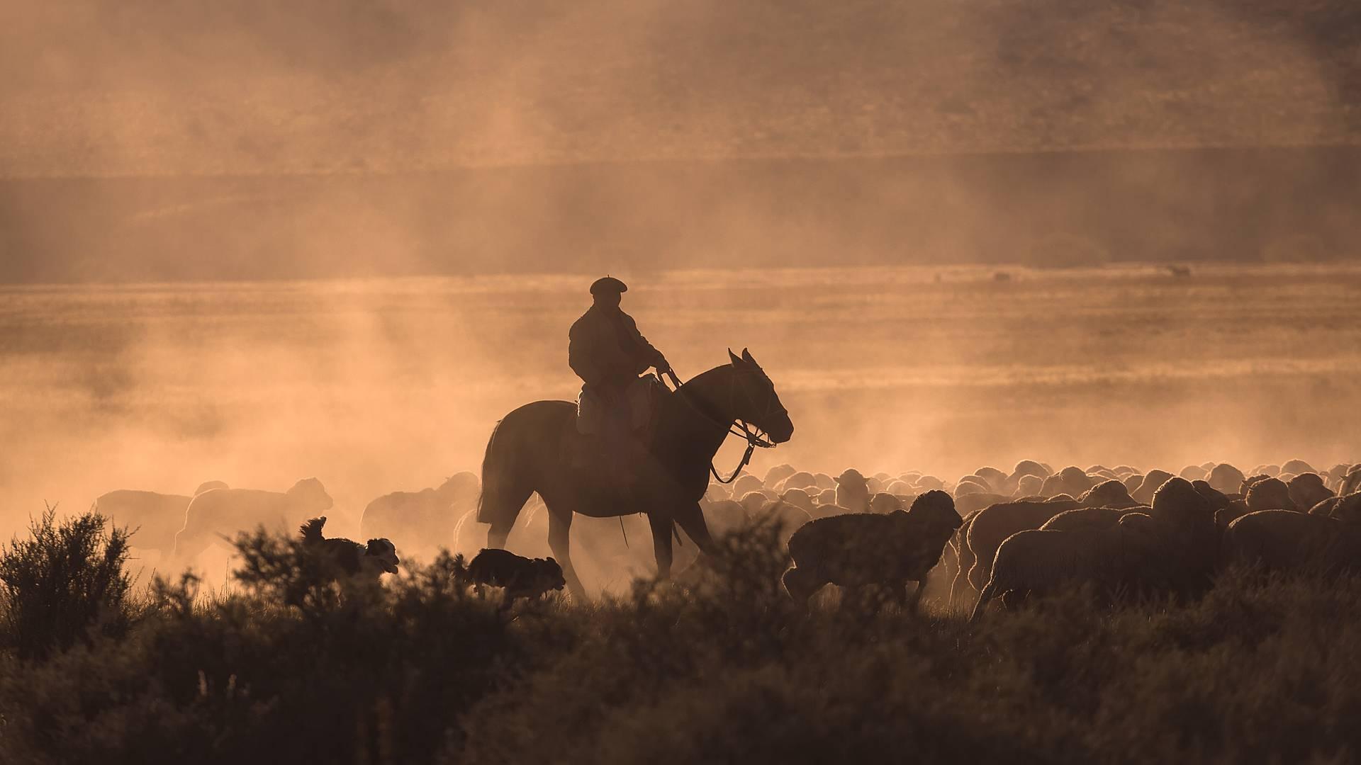 Natur und Kultur im ländlichen Patagonien