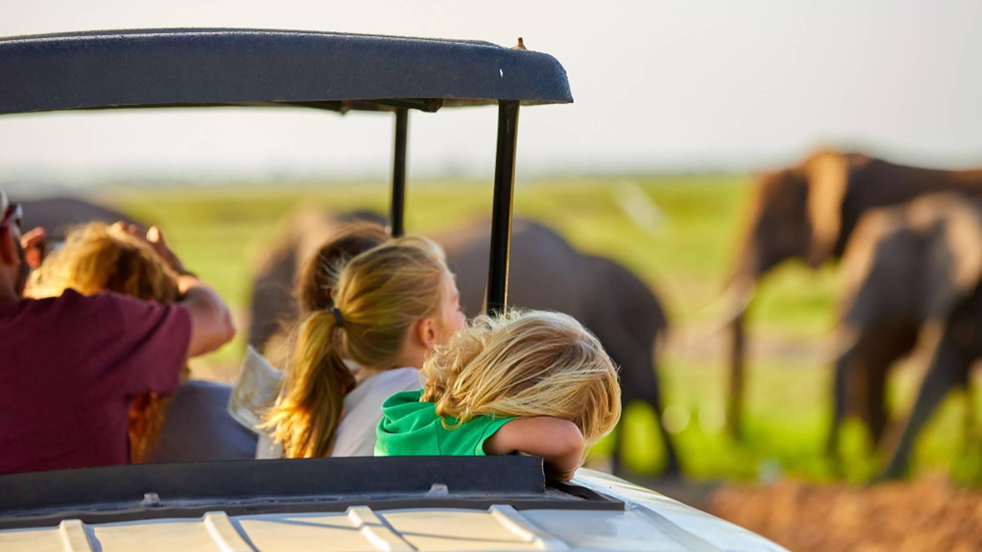 Safaris et plage de rêve en famille