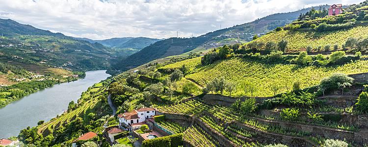 El encanto de Oporto y el Valle del Duero en familia