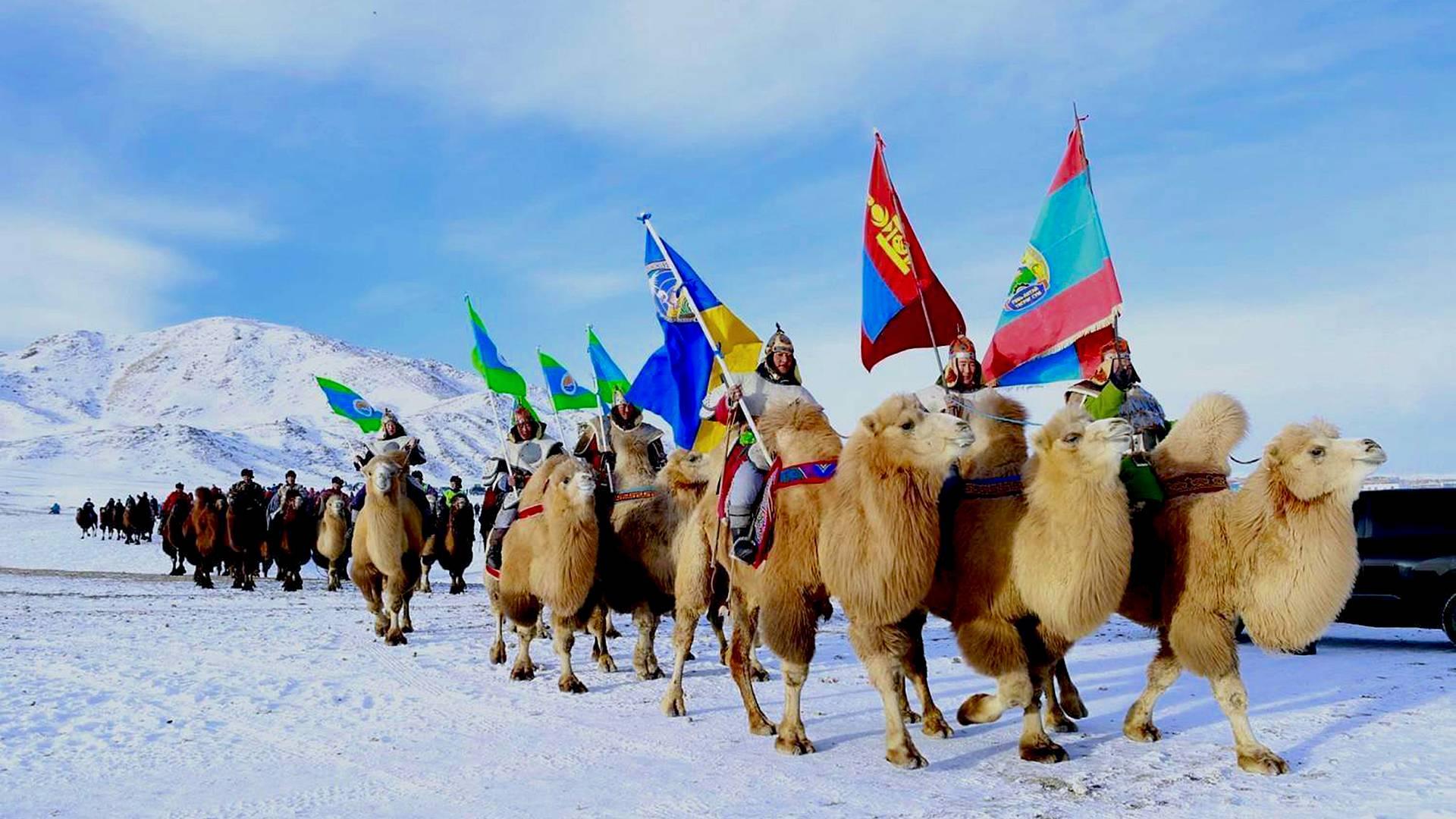 Cammelli e deserto del Gobi in inverno