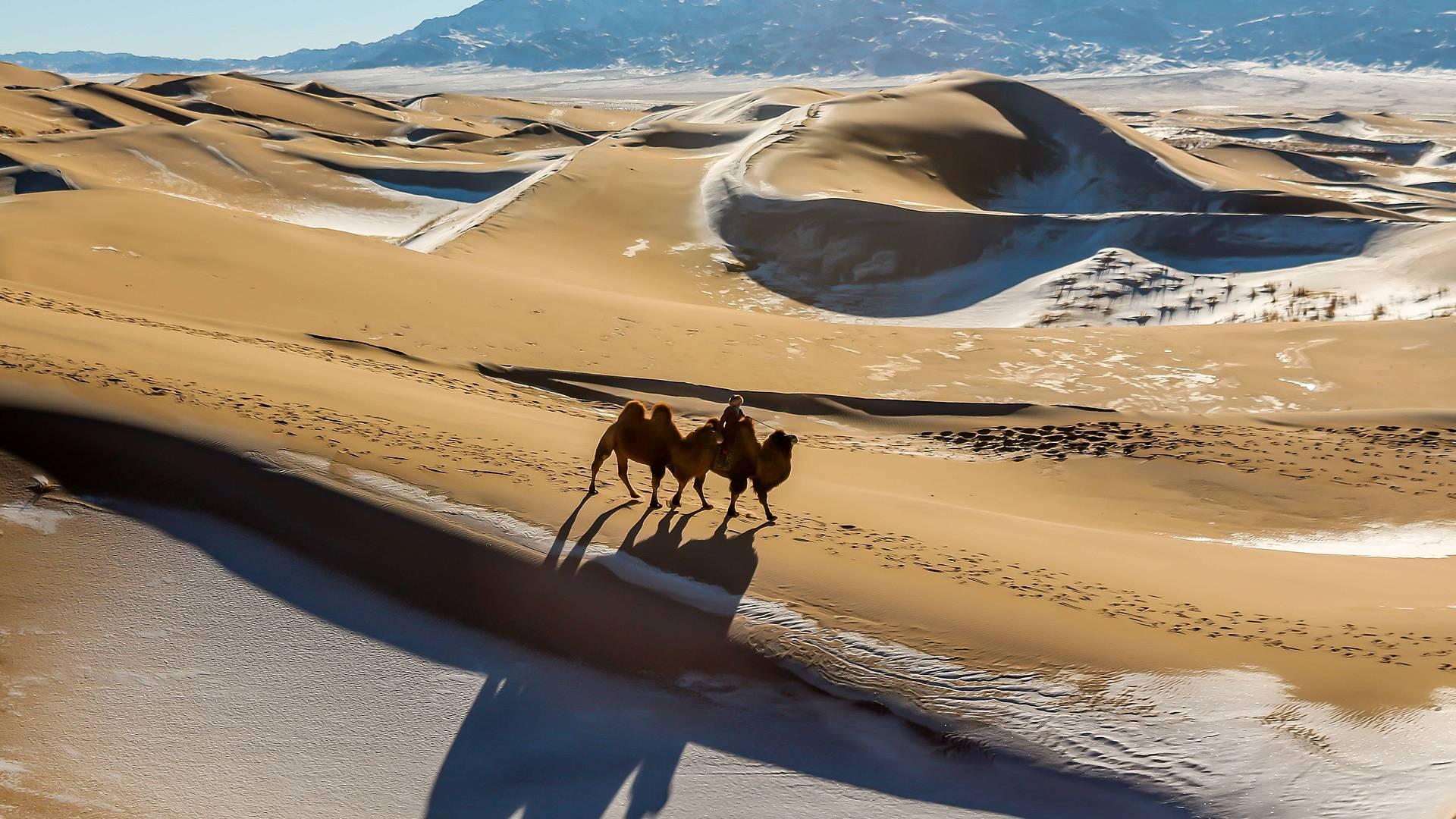 Authentischer Winterzauberin der Wüste Gobi