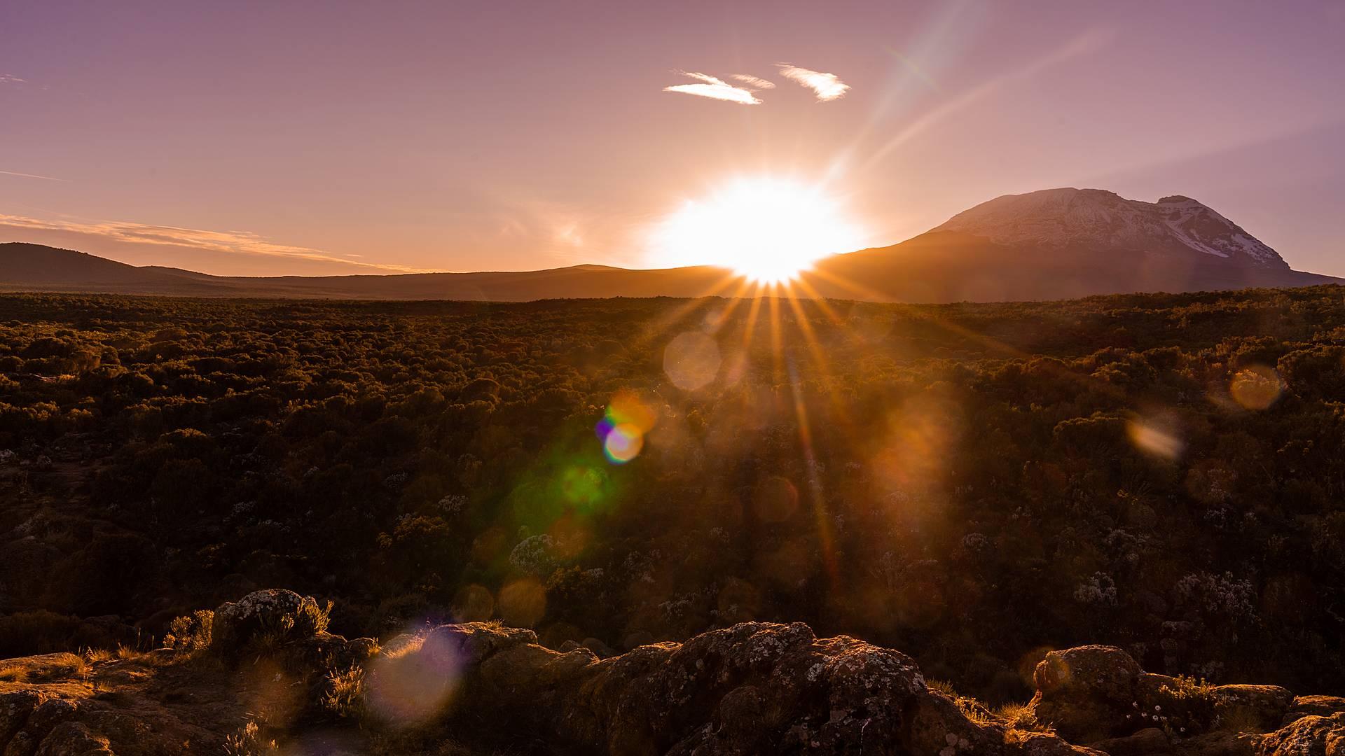 A tutta natura! Scalata del Kilimanjaro e Safari