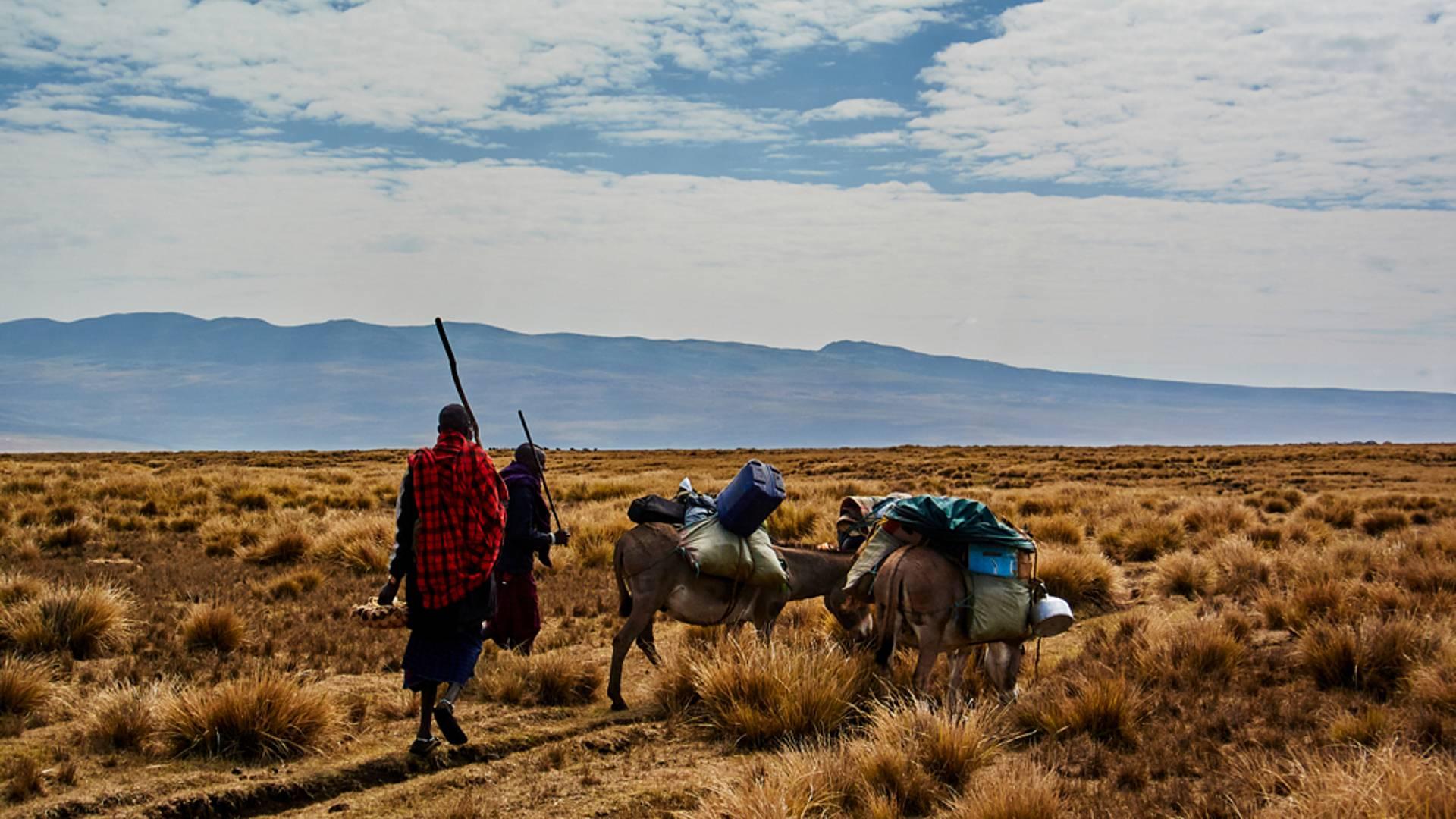 Safari magique et randonnée Maasai