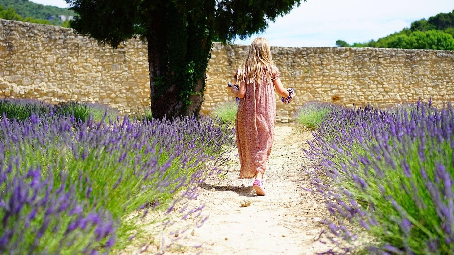 Rendez vous familial dans un mas provençal au coeur du Lubéron