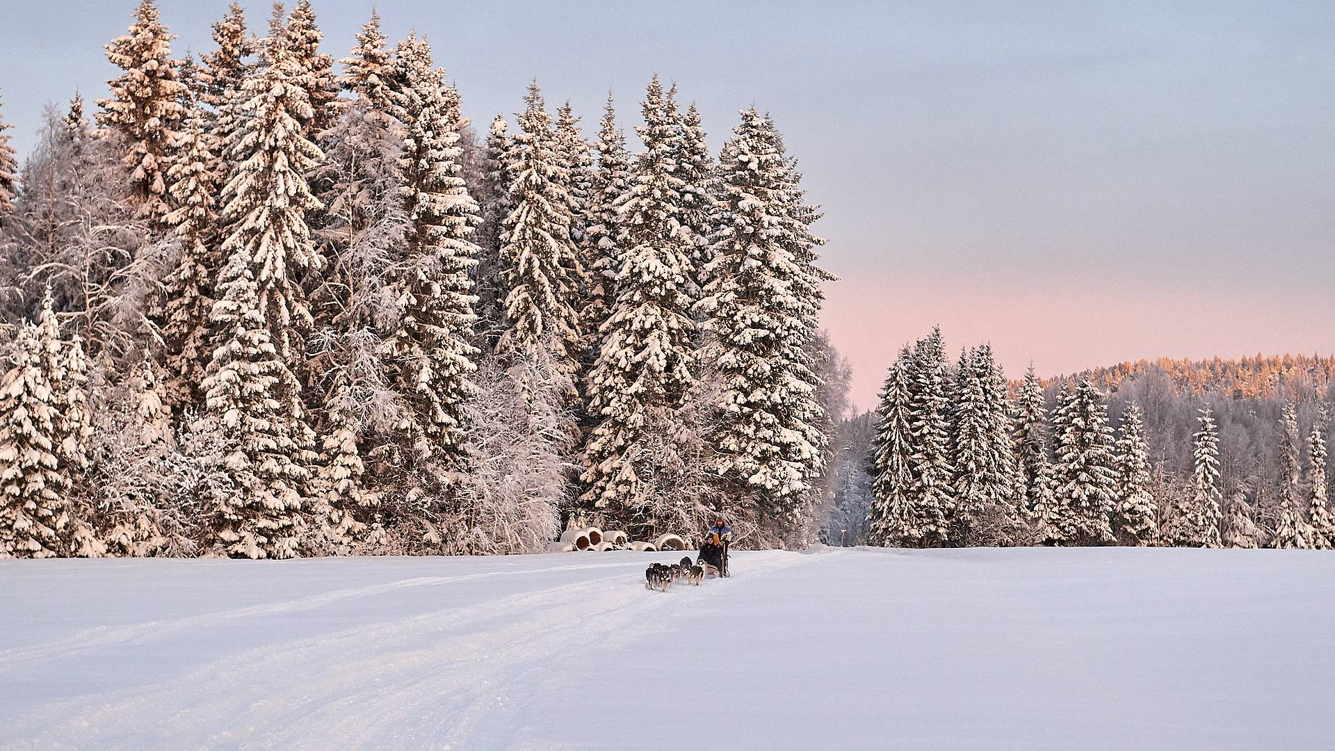 Authentique Laponie suédoise