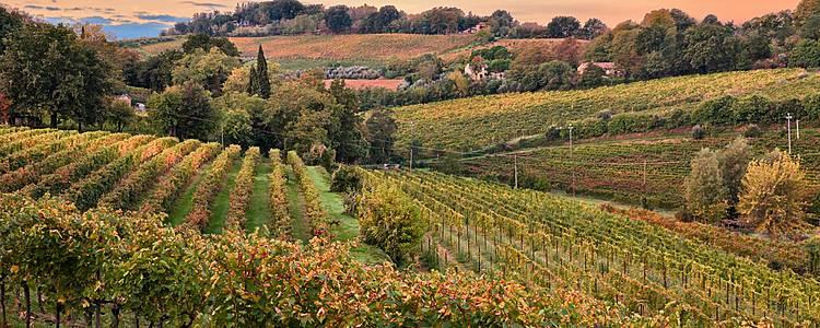 L'altra Romagna e dintorni