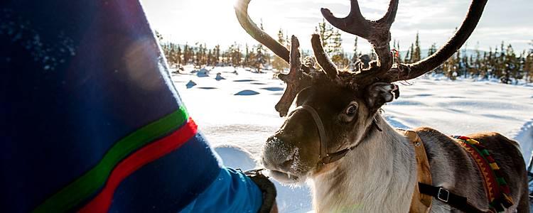 Wintertraum Kiruna