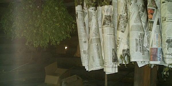 Préparation des branches de bouleau pour le bania