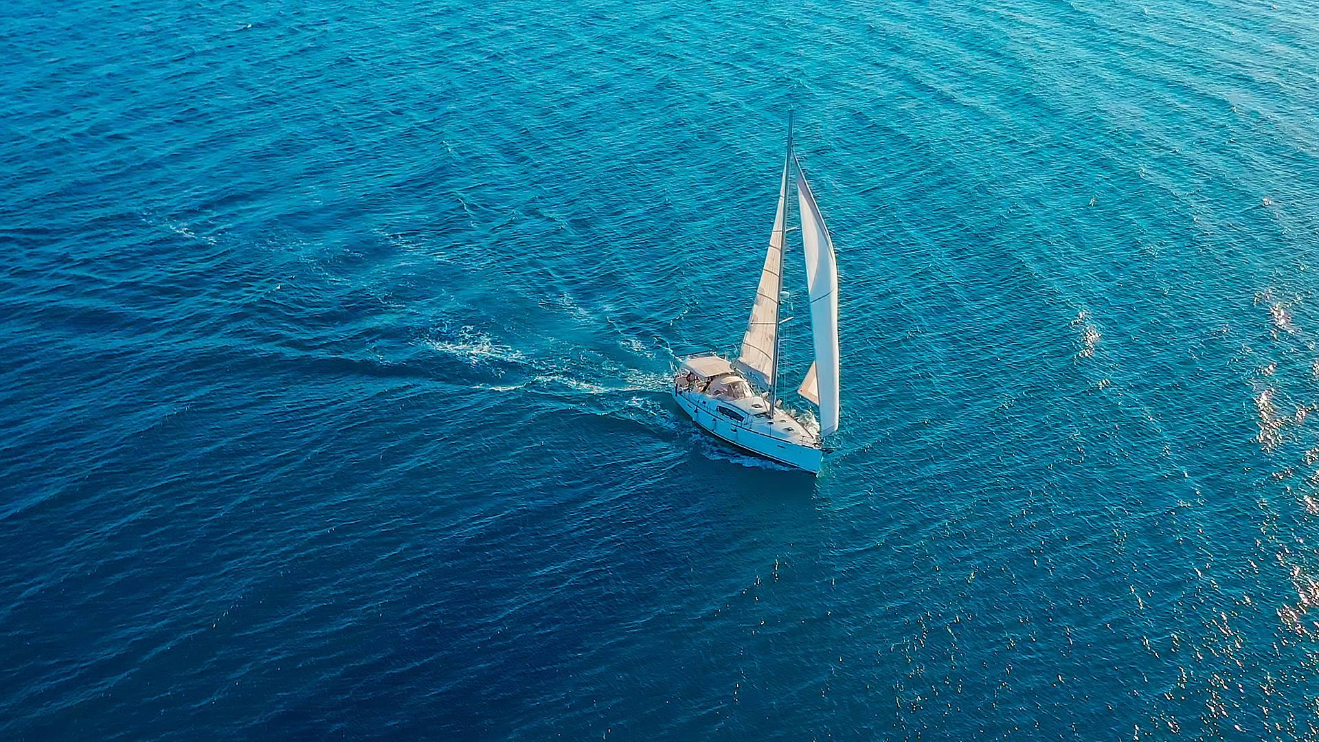 Croisière en voilier et photographie animalière en mer Méditerranée
