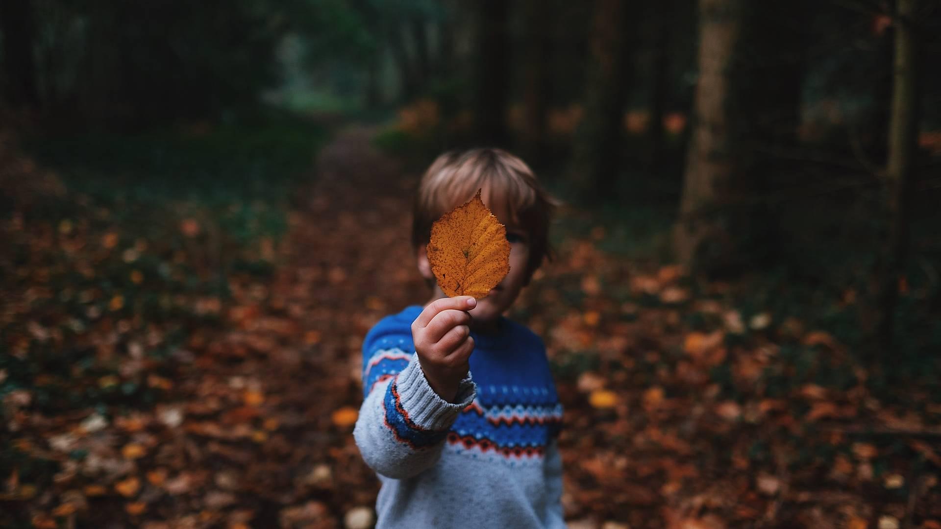 Nature, légendes et artisans avec les enfants
