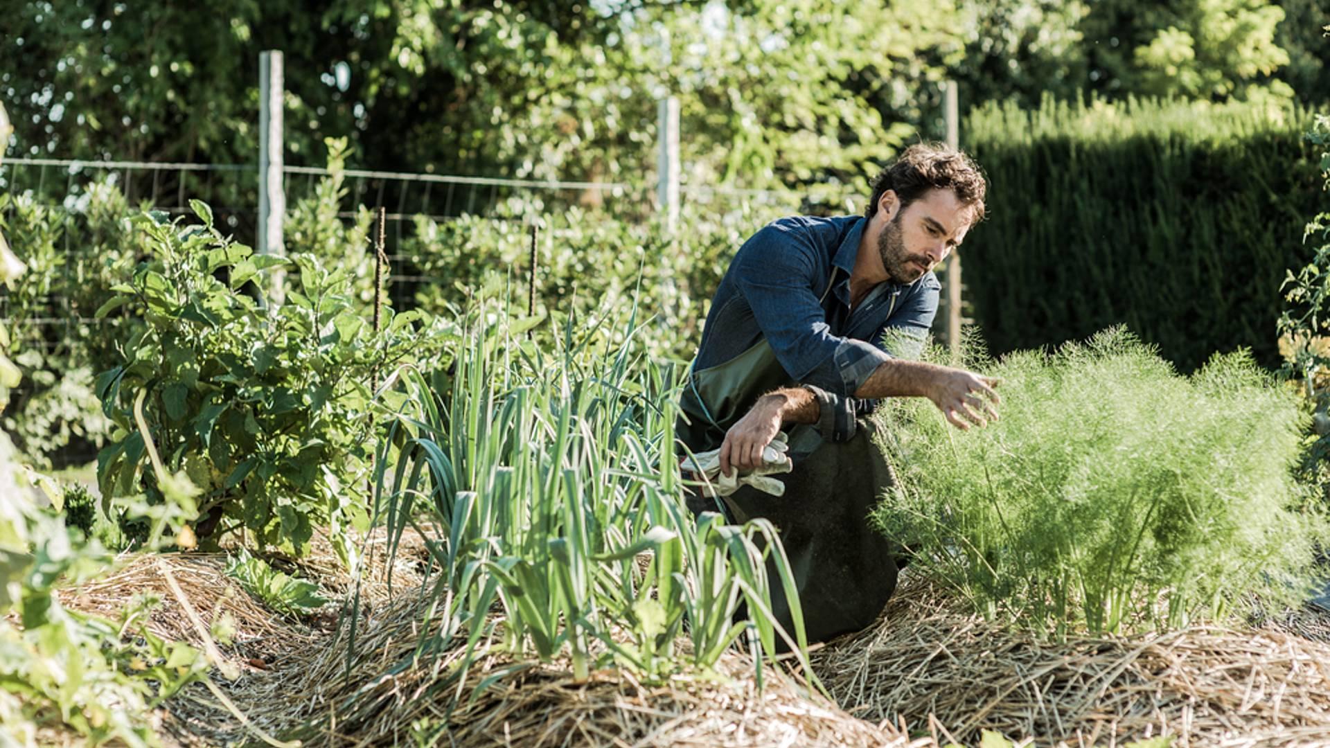 Initiation à la permaculture dans un éco-centre en Bourgogne
