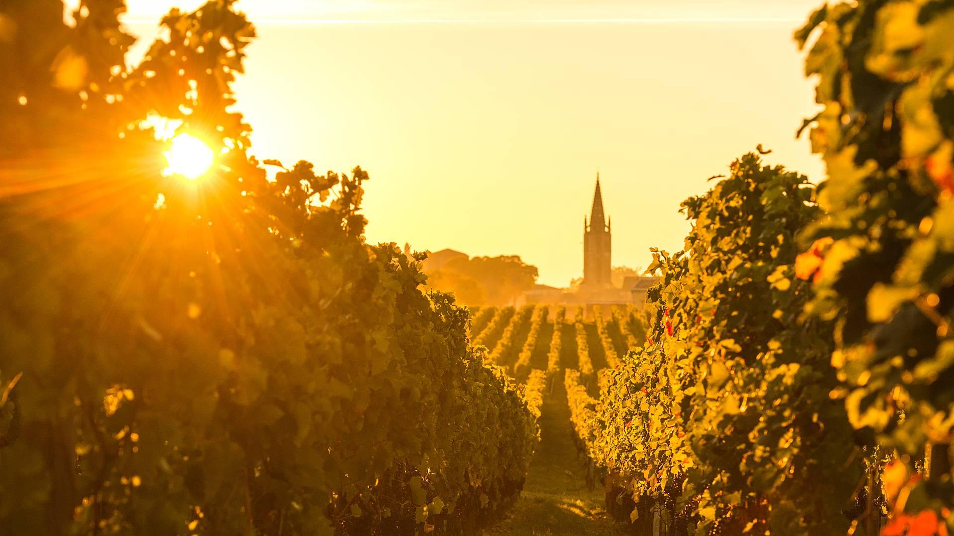 Escapade d'exception de Bordeaux à Arcachon