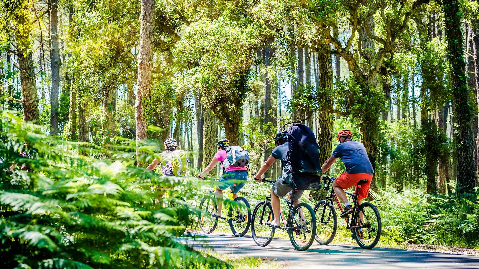 La Vélodyssée : de l'estuaire de la Garonne à Biarritz