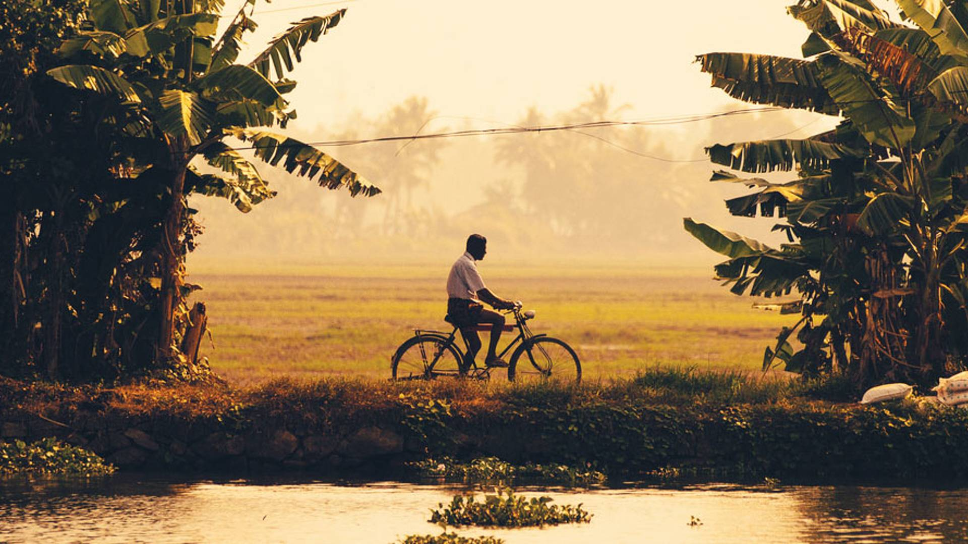 Les merveilles du Kerala à vélo