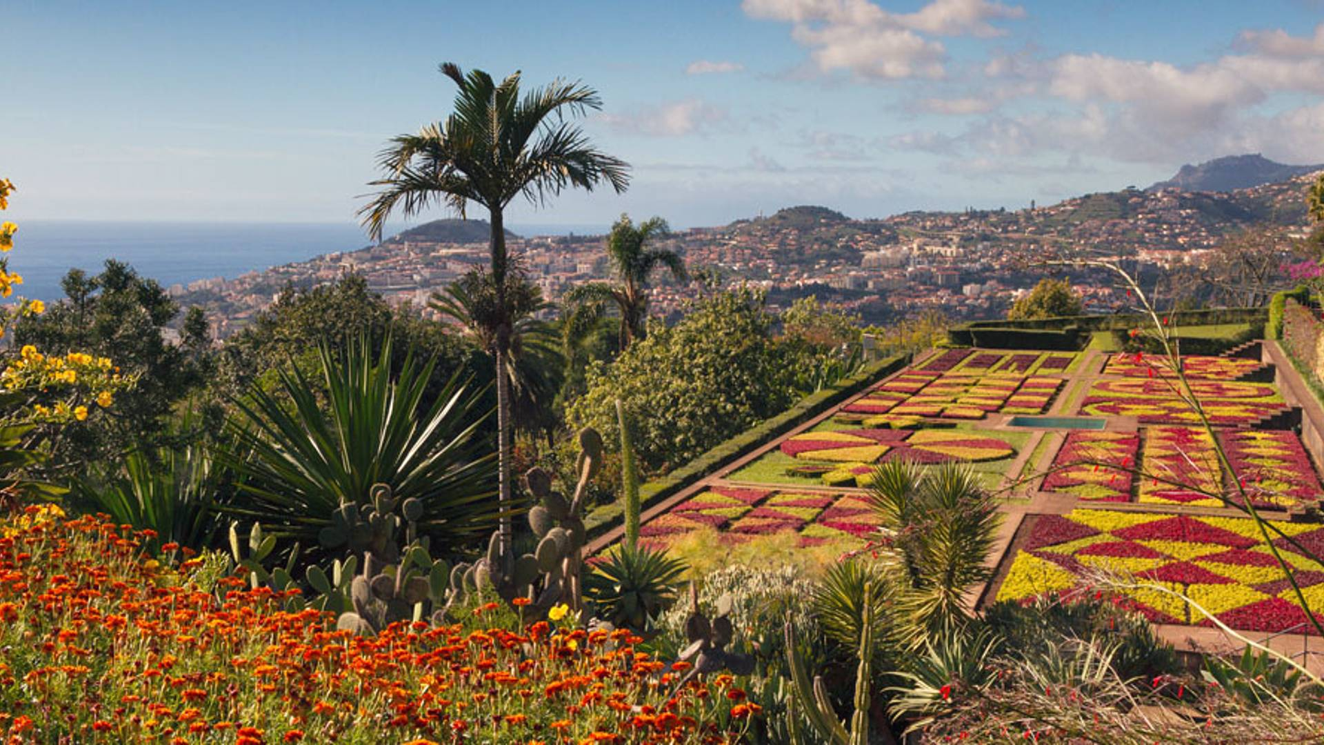 L'essentiel de Madère depuis Funchal