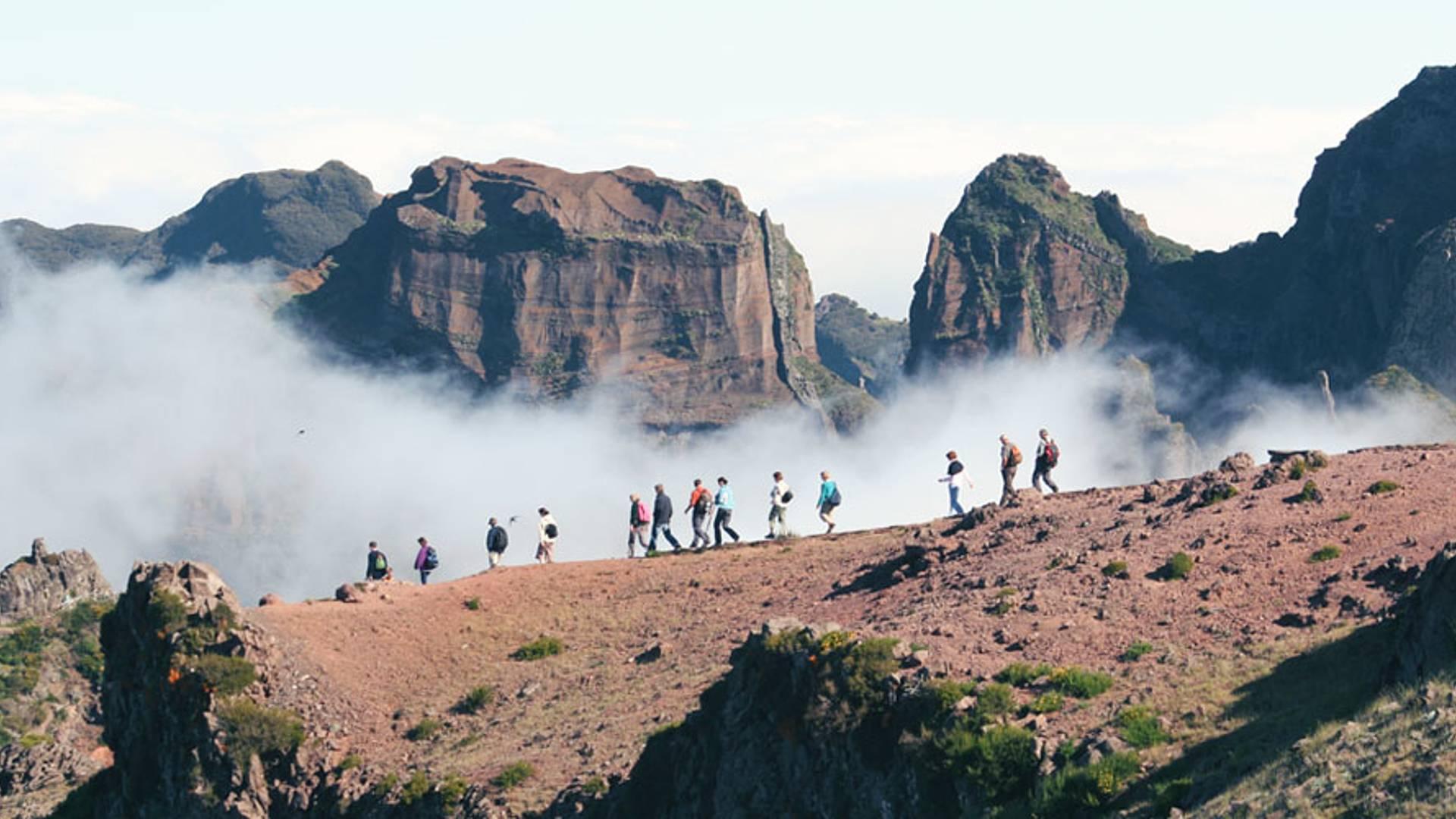 Marche et montagne en petit groupe, au coeur de la nature luxuriante de l'Est de l'île