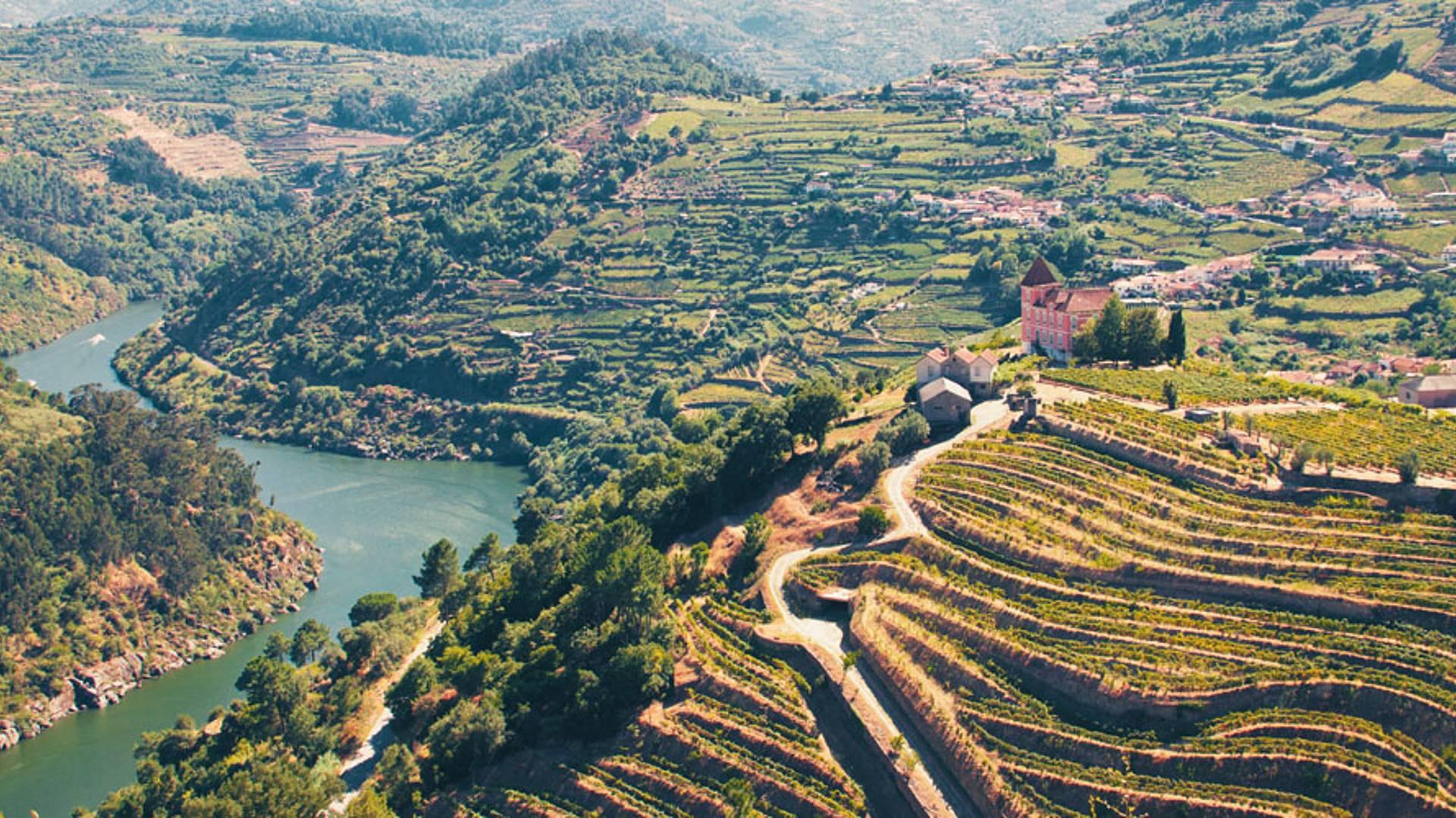 Sur la route des vins dans la vallée du Douro